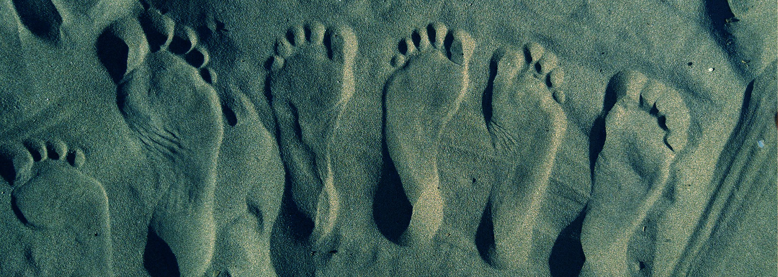 foot pro pod blog - The Foot Health Care Specialist